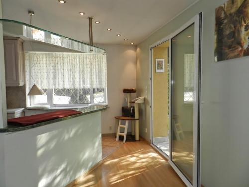 Apartament Prezydencki Durian z balkonem. Hotel dla kotów Bella Warszawa